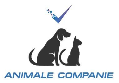 Produse uz veterinar animale de companie